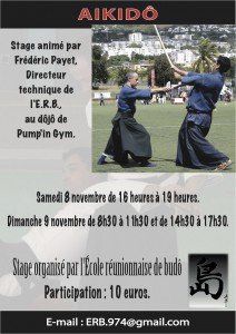 Stage aikido Réunion Sainte Clotilde novembre 2014