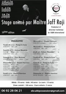 Stage aikido iaido Réunion Sainte Clotilde décembre 2014