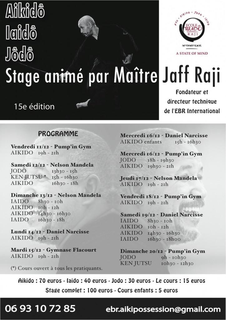 stage aikido iaido jodo décembre 2015