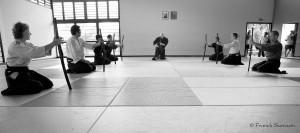 arts martiaux japonais